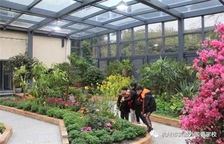在杭州赏蝴蝶,你又多了一个好去处!